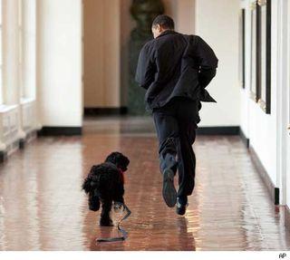 0414_obama_charlie_ap